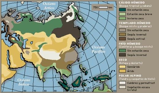 Mapa de la flora rusa