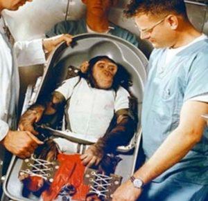 el primer chimpace en viajar al espacio