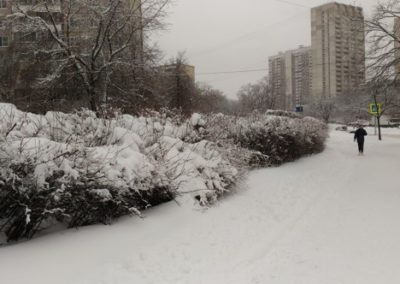 Cerca del centro comercial Vishnyakovsky